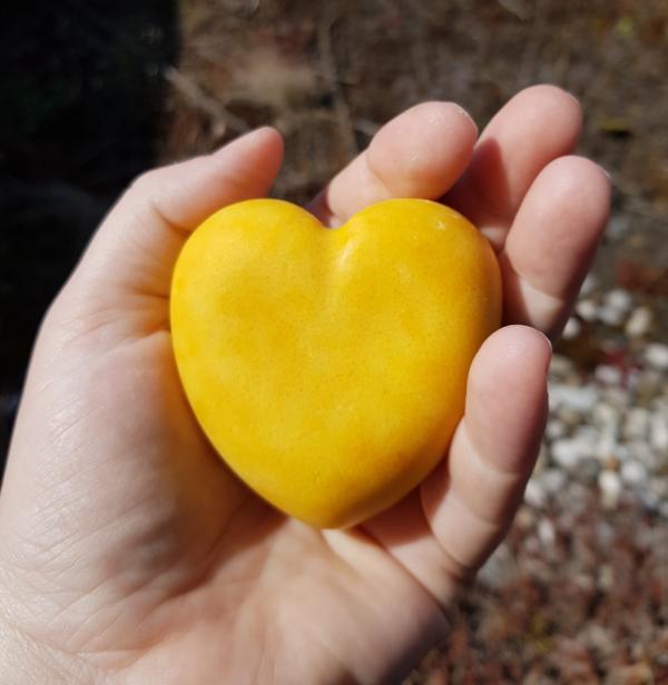 Salzige Calendula Herz